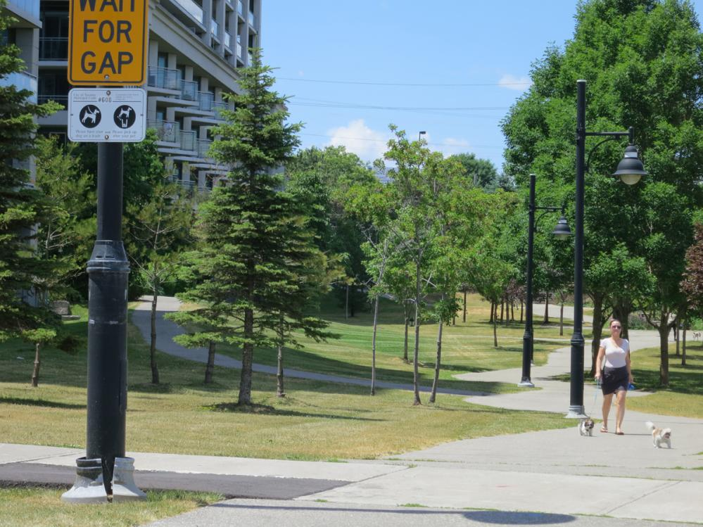 Humber Bay Shores paths to walk dogs west Toronto real estate Mimico