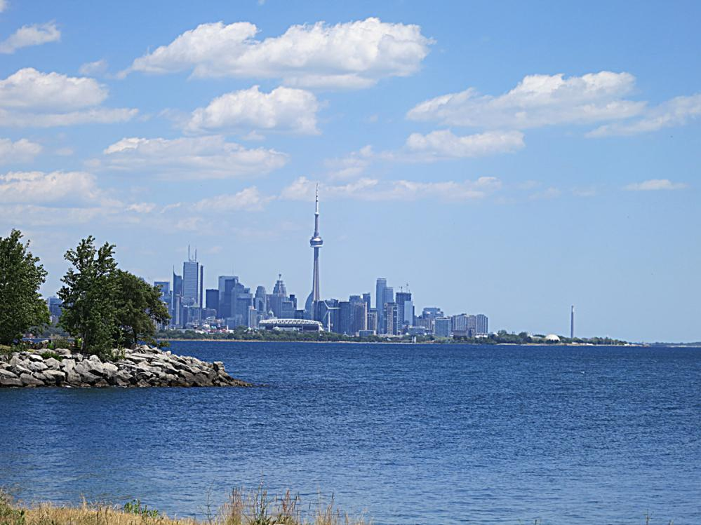Toronto skyline from Humber Bay Park west Toronto real estate